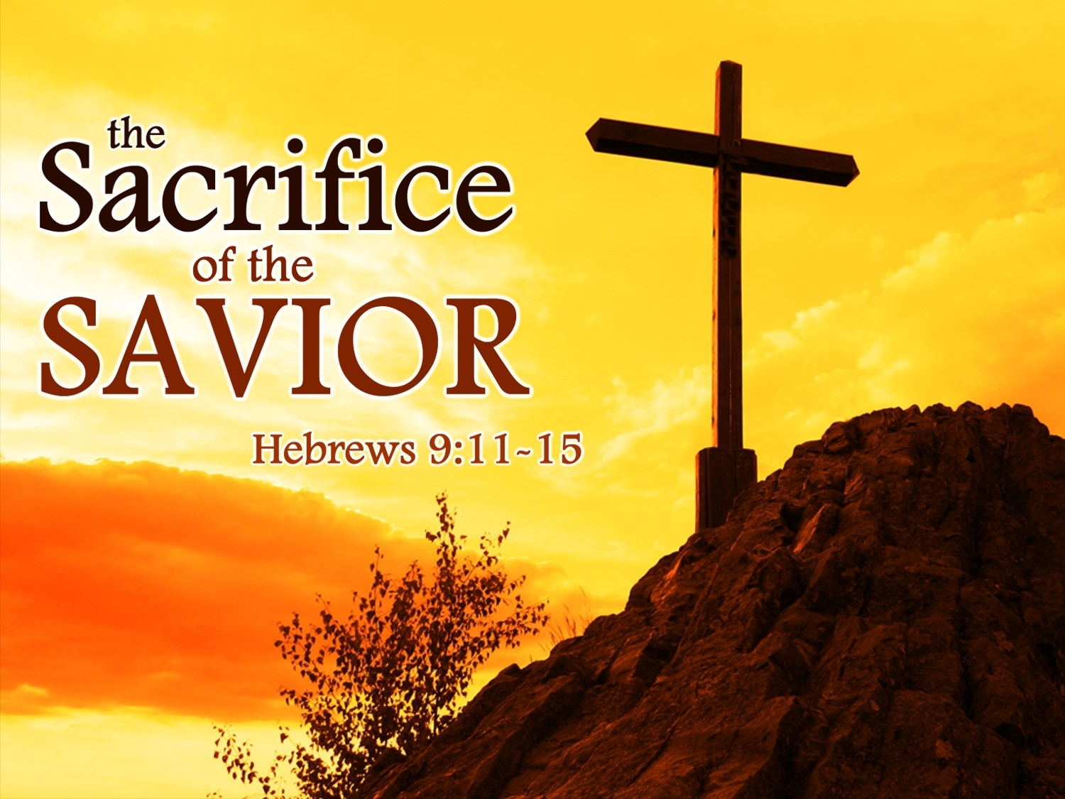 sacrifice and bible Four stories of sacrifice and willingness posted on january 7,  this entry was posted in bible study, christianity and tagged abraham, bible, .